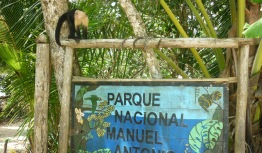 Manuel A (4)