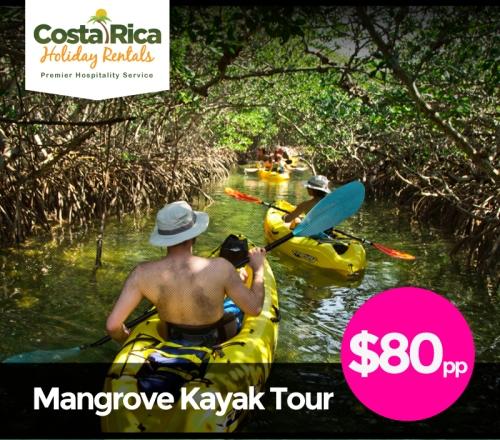 crhr-html-mangrove-kayak